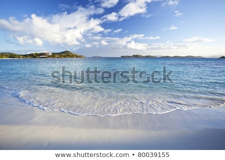 Sapphire Beach at St Thomas in the US Virgin Islands stock photo © chrisukphoto