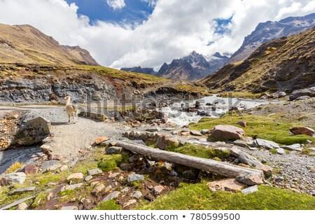landscape in Andes. Peru. Stock photo © Pakhnyushchyy