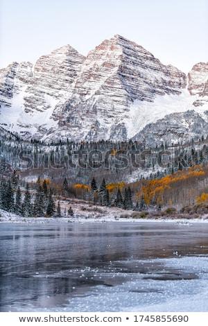 hegyek · tél · felhők · tájkép · hó · fák - stock fotó © pictureguy