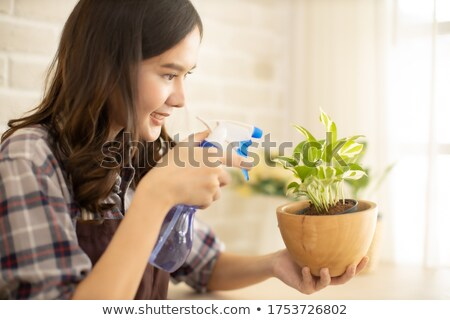 Young girl and woman potting a plant Stock photo © IS2