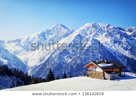 Inverno montagna fotografia legno Natale panorama Foto d'archivio © Kotenko