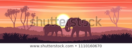 Cartoon elephant with a banner. Stock photo © bennerdesign