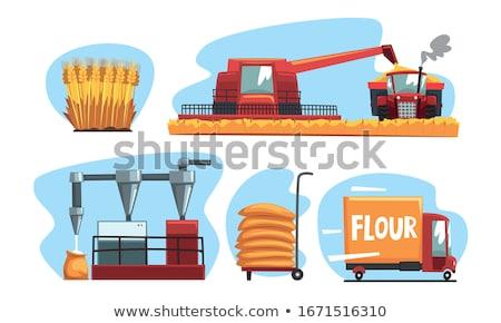 Establecer alimentos productos trigo harina eps Foto stock © netkov1