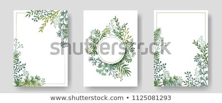 bloemen · kaart · helling · bloem - stockfoto © barbaliss