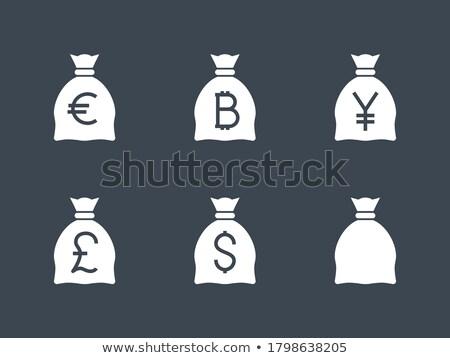 Dinheiro saco euro vetor ícone isolado Foto stock © smoki