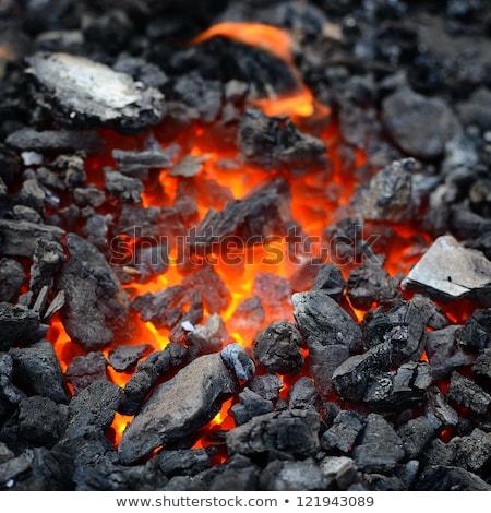 Ardente fogueira fogo carvão pedras fumar Foto stock © LoopAll