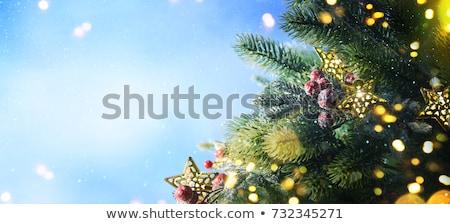 Karácsonyfa hó liszt copy space felső kilátás Stock fotó © Bozena_Fulawka
