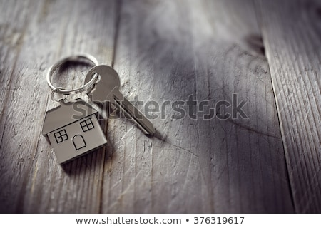 Real Estate Agent Giving Keys To Apartment Owner Stock photo © AndreyPopov