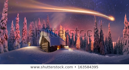 Piękna christmas scena gnom projektu noc Zdjęcia stock © balasoiu