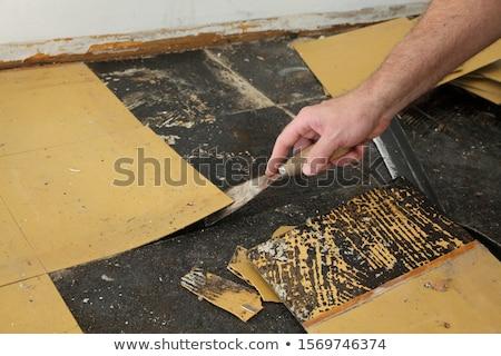 Oude vinyl tegels verwijdering vloer kamer Stockfoto © simazoran