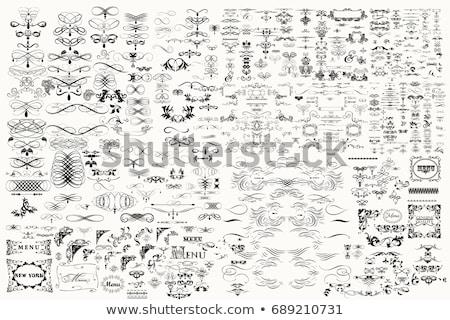 Mega set of vector calligraphic elements for design Stock photo © blue-pen