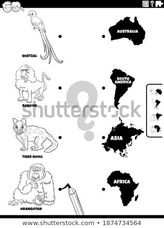 Match animaux continents couleur livre page Photo stock © izakowski