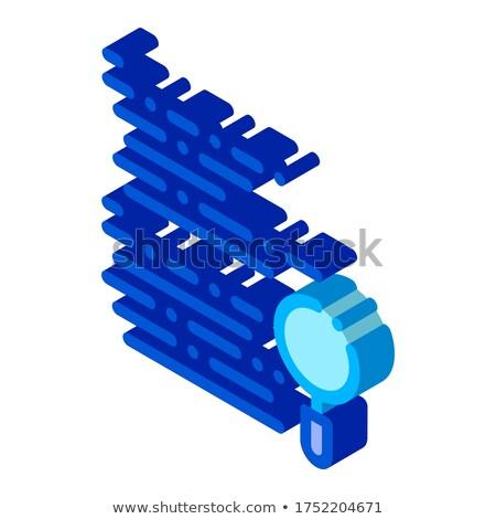 Lupa pesquisar código erro isométrica ícone Foto stock © pikepicture
