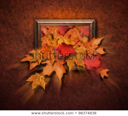 Fall Leaves Coming Out of Antique Frame Stock photo © HaywireMedia