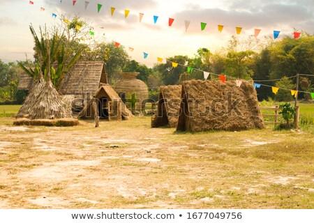 ünnepi bungaló otthon díszített ünnepek sok Stock fotó © michelloiselle