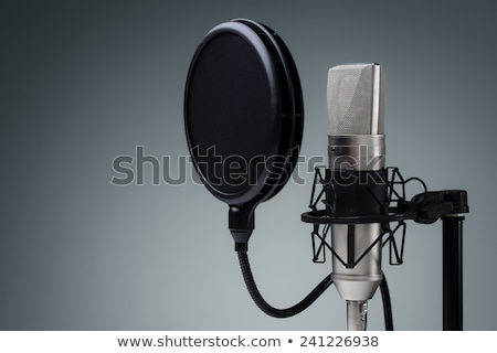 vocal studio microphone grey Stock photo © vkraskouski