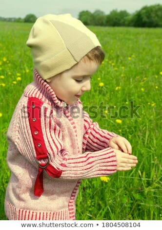 Boy Searches For Bug In Herb On Meadow Stok fotoğraf © Fanfo