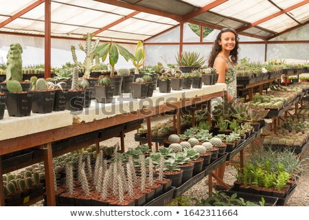 Mosaic of woman in vegetable garden Stock photo © photography33