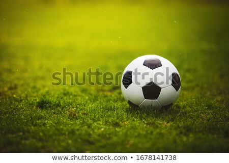 Classic soccer ball on grass Stock photo © lightkeeper