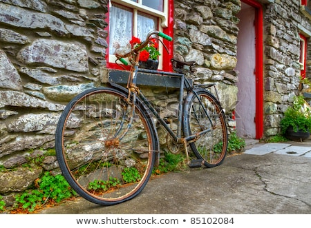 Velho fazenda casa bicicleta telhado residencial Foto stock © samsem