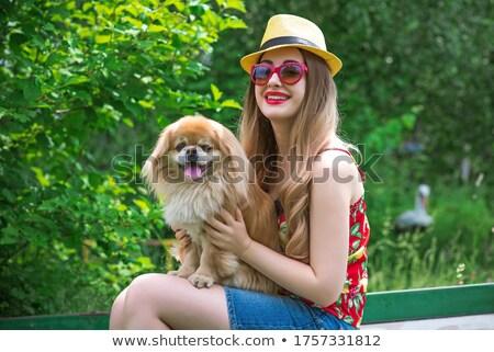 щенков · собака · соломы · корзины · молодые · животного - Сток-фото © acidgrey