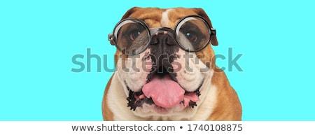 Duży język cartoon człowiek zmartwiony spuchnięty Zdjęcia stock © blamb
