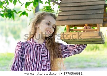 Nina aves primavera siluetas mujer paisaje Foto stock © milsiart