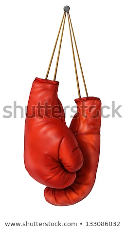 Boxing gloves hang with laces nailed to wall as a business or sport concept of a person that retires Stock photo © Hermione
