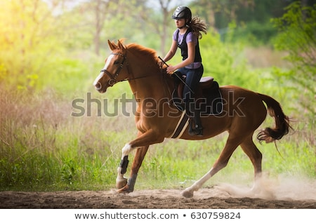 Young Teen Girl Riding a Horse Stock photo © 2tun