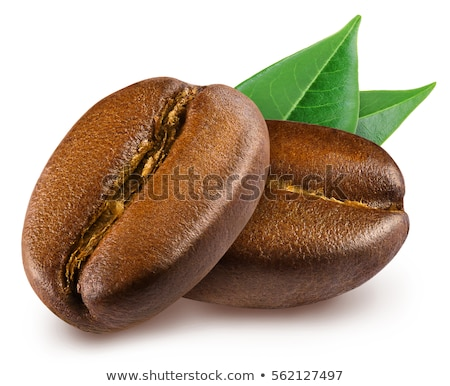 Two Brown Coffee Beans Isolated on White Background Stock photo © maxpro
