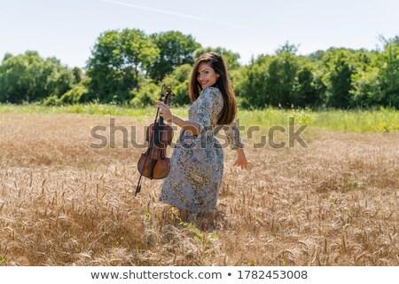 красивая · женщина · скрипки · молодые · играет · музыку - Сток-фото © aikon