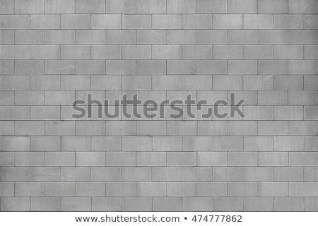 Beton duvar yıpranmış kaba rustik çimento Stok fotoğraf © Lightsource