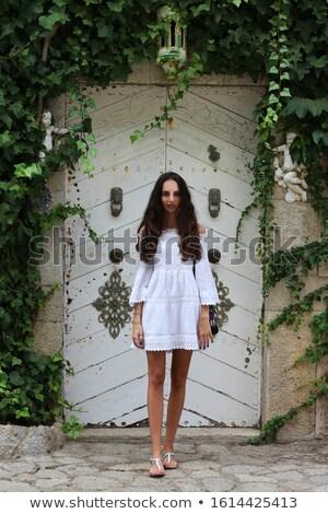 portré · aranyos · lány · arc · szexi · szemek - stock fotó © konradbak