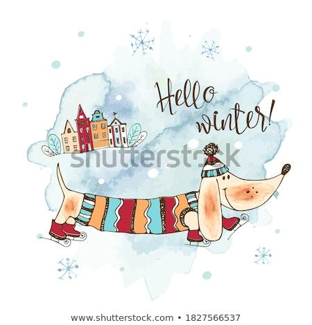 Dachshund on holiday Stock photo © ondrej83