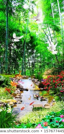 Güzel çağlayan nehir yaz yeşil ağaçlar Stok fotoğraf © papa1266