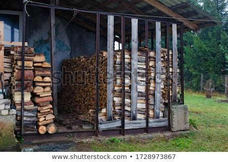 drogen · gehakt · brandhout · klaar · winter · boom - stockfoto © meinzahn