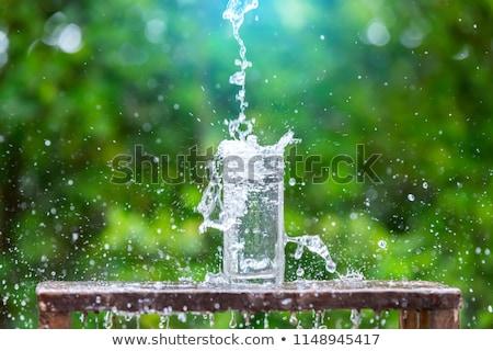 Green meadow and water splash stock photo © cherezoff