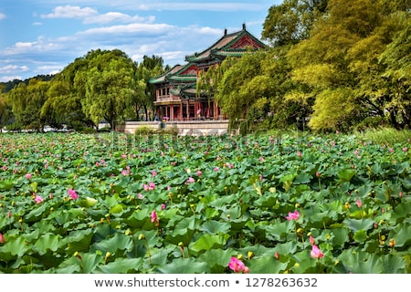 Red Pavilion Lotus Garden Summer Palace Park Beijing China Stock photo © billperry