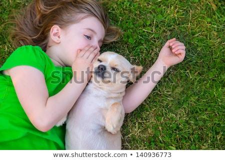 loiro · criança · menina · humor · cachorro · cão - foto stock © lunamarina