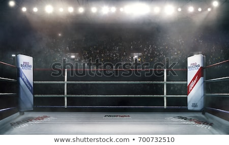 Boxeo silueta ilustración dos personas cara deporte Foto stock © rudall30