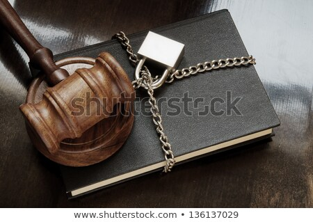 A law book with a gavel - Privacy law Stock photo © Zerbor