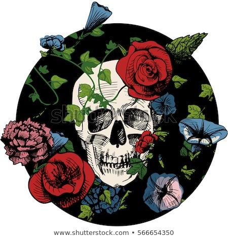 Sugar Skull Tattoo Etching Stock photo © patrimonio