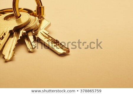 security concept keys with golden keyring stock photo © tashatuvango