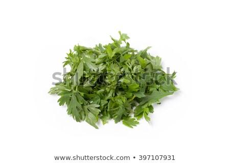 chopped parsley and onion stock photo © antonio-s