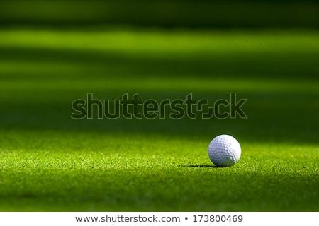 golfbal · gat · grasveld · hemel · gras · golf - stockfoto © tetkoren