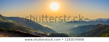Stock fotó: Sun Rising In A Forest With Fog