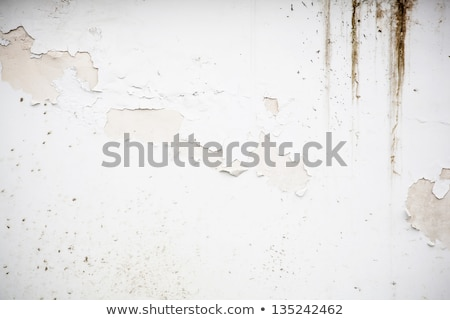 Wall with  peeled off green paint Stock photo © Paha_L