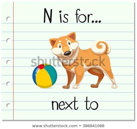 N betű természet háttér művészet oktatás labda Stock fotó © bluering
