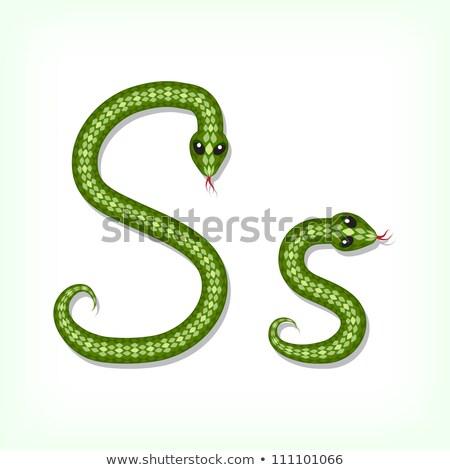 List węża ilustracja biały tle zielone Zdjęcia stock © bluering