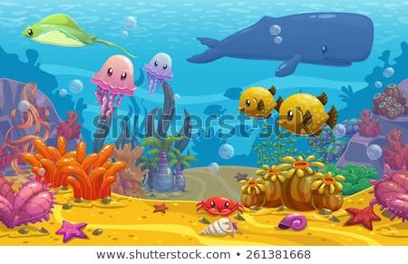 Stock photo: funny cartoon with sea life background